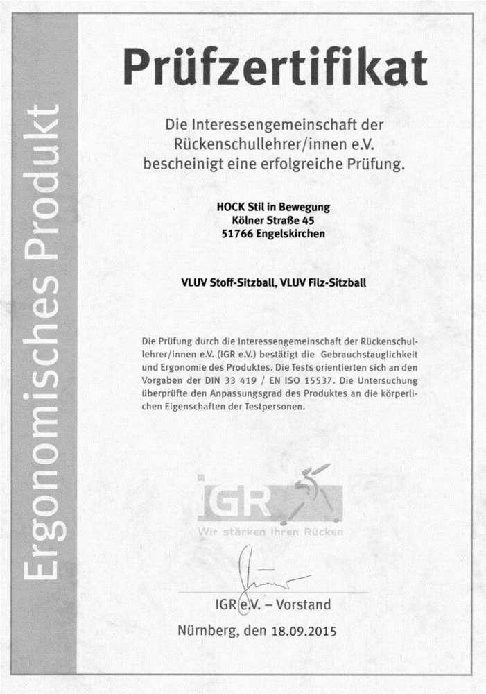 אישור מכון ארגונומיה גרמניה כדור ישיבה